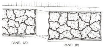 Matching Panel A To The Grooves In Panel B.